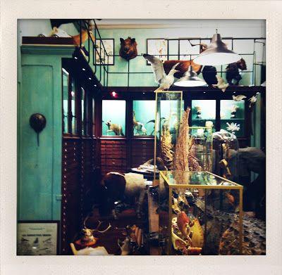 Paris Photo Evidence Pt. 2 | Steamer Trunks, Taxidermy, Booze - Hollister Hovey