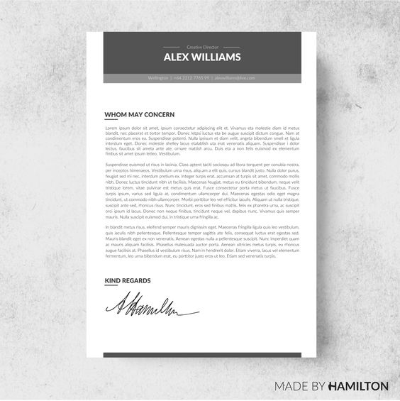 Zone Resume Template + Cover Letter - Resumes - 2 creations