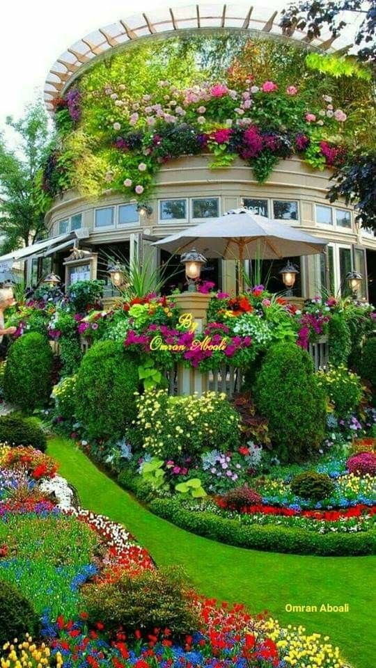 Magnificent What A Beautiful World Enjoy Beautiful Flowers Garden Beautiful Gardens Flower Garden Design