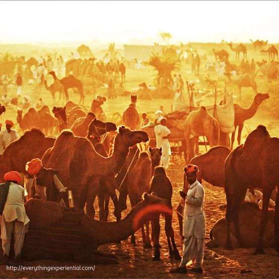 Pushkar fair_7