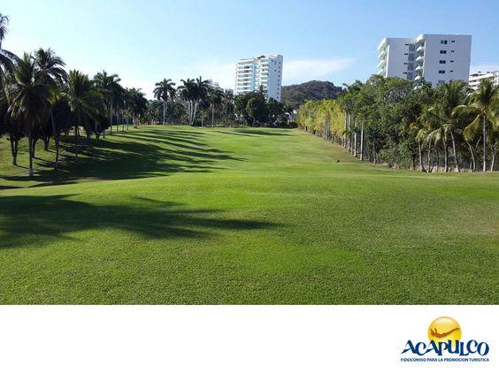 #informaciondeacapulco Los campos de golf de Acapulco. INFORMACIÓN DE ACAPULCO. Acapulco también es famoso por sus campos de golf, ya que son muy amplios, naturales y bellos. Los principales son el Club de Golf Acapulco, ubicado en el corazón de la ciudad y el de Tres Vidas que está rumbo al aeropuerto. Aunque cuenta también con muchos otros, estos dos son los más grandes y reconocidos. Durante tus siguientes vacaciones en Acapulco, te invitamos a conocer más de sus atractivos…