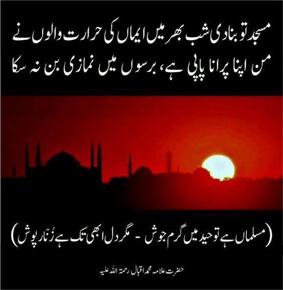 Essay muslim unity