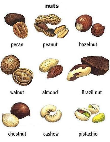 Forum | Learn English | Nuts Vocabulary in English | Fluent Land