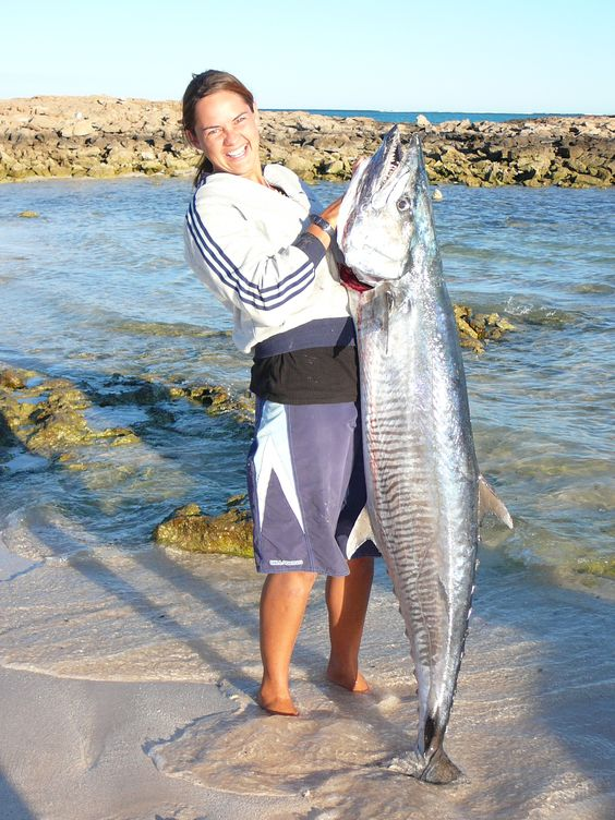 BIG Spanish Mackerel - Exmouth WA