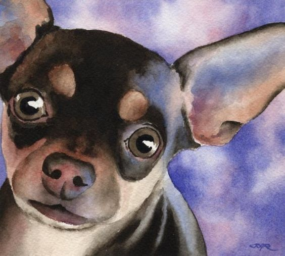 CHIHUAUA Dog Signed Art Print by Artist DJ Rogers by k9artgallery, $12.50