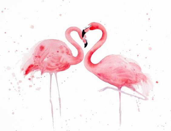 Сердце фламинго #2 - Два розовых Фламинго, любовь, романтические, тропических птиц, экзотических птиц, День Святого Валентина подарок, Фламинго искусства