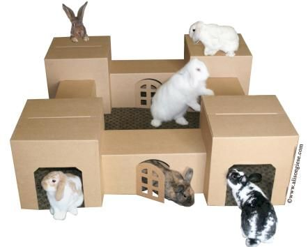 Hopper Hide-away Fort for Cats & Rabbits & More