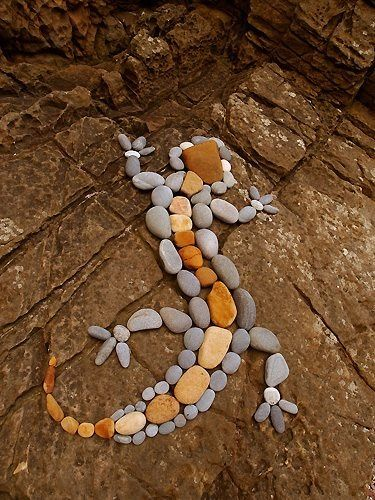 Rock lizard: