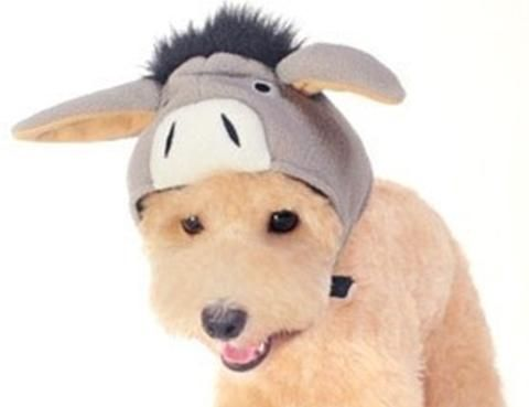 Plush Gray Charmed Donkey Hat With Floppy Ears For Dogs Sizes Xs To Xl Daisey S Doggie Chic Floppy Ears Bandana Dog Dog Hat