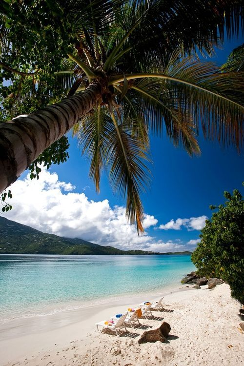 Stop Everything: The US Virgin Islands Will PAY You To