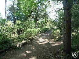 Résultats de recherche d'images pour «terrain boisé pente»