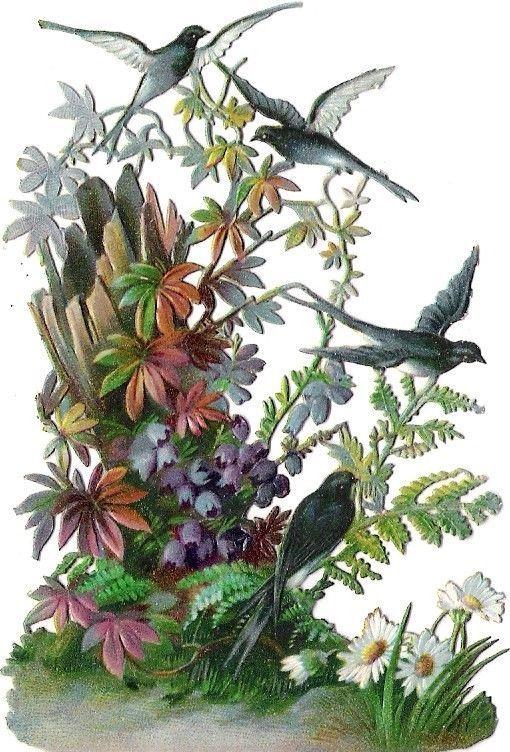 Oblaten Glanzbild scrap die cut chromo  Schwalbe Vogel bird Blume Holz: