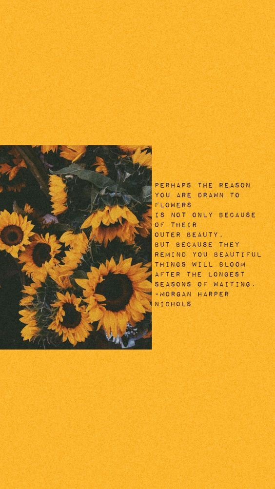 Time And The New Year Kyla Richey In 2020 Yellow Quotes Sunflower Quotes Wallpaper Quotes