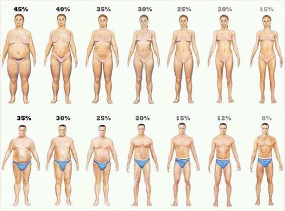 Qual percentual de BF você tem ? Qual percentual de gordura você deseja ter ?