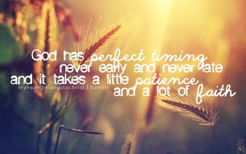 little patience and a lot of faith.