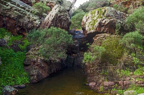Near Eyre Depot. http://bushwalk.com/forum/viewtopic.php?t=18689&p=249311
