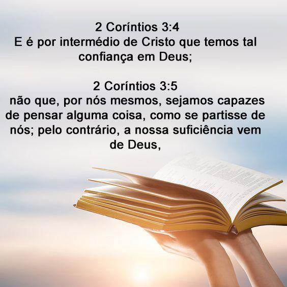 Conheca Sua Biblia De Capa A Capa Com Imagens Confianca Em