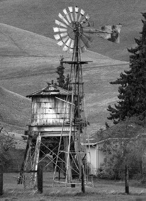 Old Farm Windmills    Moinhos de vento velhos por Madsen taren