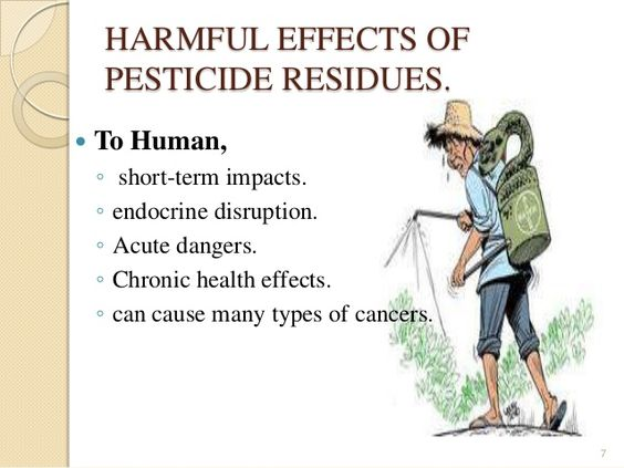 How much do you really know about the pesticide spraying policies of you favorite garden center?  What might they be hiding? Do staff or management show obvious signs harmful exposure such as skin rashes?