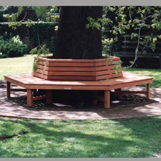 Trees Products And Benches On Pinterest