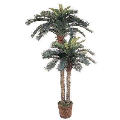 6' & 4' Sago Palm Double Potted Silk Tree.  This double potted silk Sago Palm tree is simply paradise! It features two beautiful stalks of Sago Palms; one 4 ft and one 6 ft. This tree boats 80 green leaves and is set in a 10 in brown basket. The trunks themselves are browning in spots and feature the texture of a real palm. This breath taking tree is the perfect accent piece to any home decor. #sagopalm #silktree