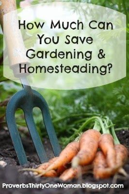 How much money can you save gardening and homesteading apparently proverbs 31 woman can save - Money saving tips in gardening ...