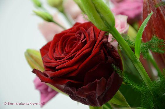 Close up van een boeket, rode roos. www.krayenhoff.nl
