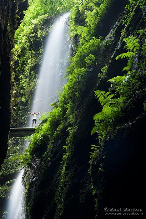 hiking to Barranco de Los Tilos, Isla de La Palma, Canarias. Spain Saul Santos Diaz - photographer