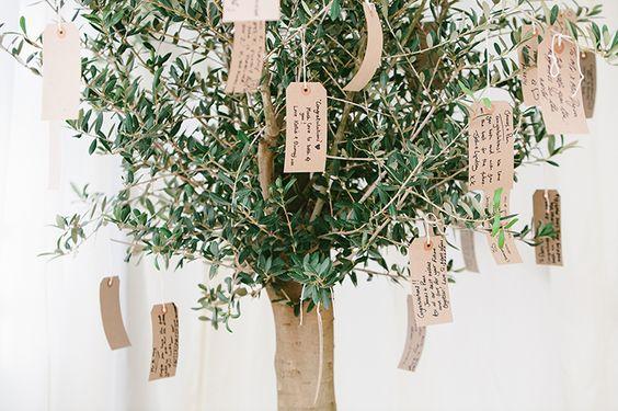 Hochzeitgeschenke-trends-geschenkidee-olivenbaum