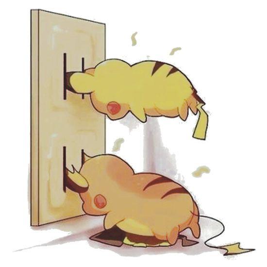 pikachu and raichu in a plug lol
