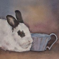 """""""Teacup Bunny"""""""