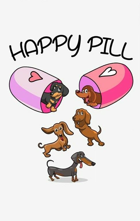 Dachshund Dachshund Cartoon Daschund Puppies Dachshund Quotes