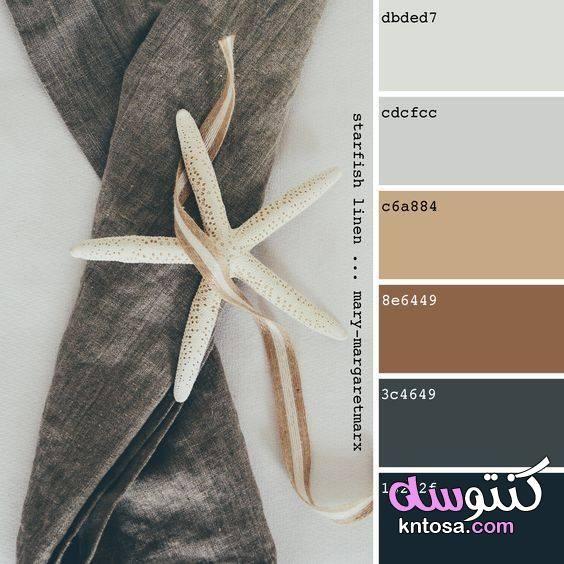 بالصور درجات الالوان اللي تليق على بعض كيفية تنسيق الالوان مع بعضها Kntosa Com 31 19 156 Tan Color Palette Color Palette Design Pantone Colour Palettes