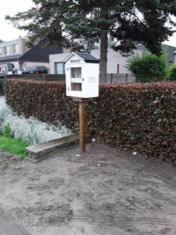 Little Free Library Evergem 6