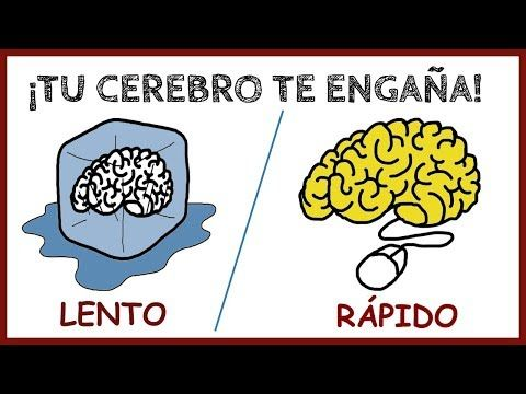 Como Te Engaña Tu Cerebro Pensar Rápido Pensar Despacio Daniel Kahneman Youtube Pensando En Ti Cerebro Despacito