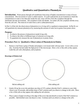 osmosis in potatoes coursework Related searches for osmosis potato experiment gcse gcse osmosis osmosis coursework introduction to osmosis osmosis is a special kind of diffusion.