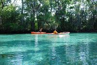 Three Sisters Springs. The entrance is quite deceiving, but once you go in it's absolutely gorgeous. The water is so clear and it's 72 de...