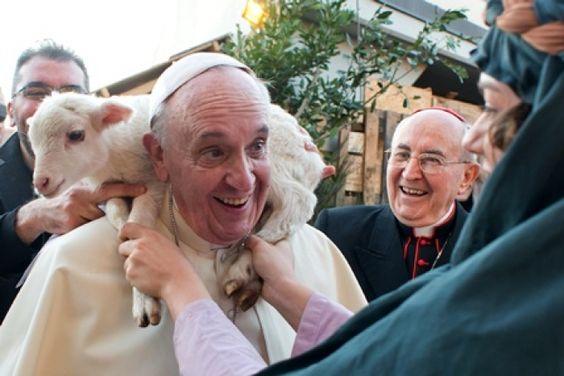 Francisco: «Que los cristianos sean corderos, no lobos. Corderos, pero no tontos»