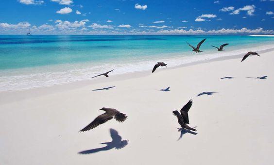 Séjourner sur une île presque déserte, loin de tout, le rêve non ? #Seychelles #IleDéserte  #HorsDesSentiersBattus