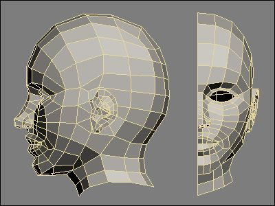 Low poly count 3d human head reference 3d animation for 3ds max face modeling