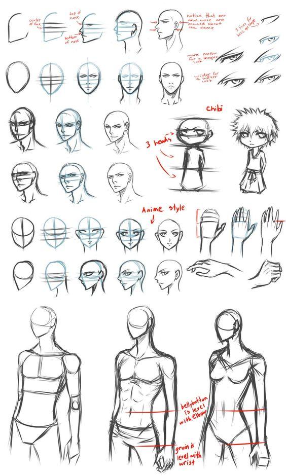 drawing anatomy - Google Search