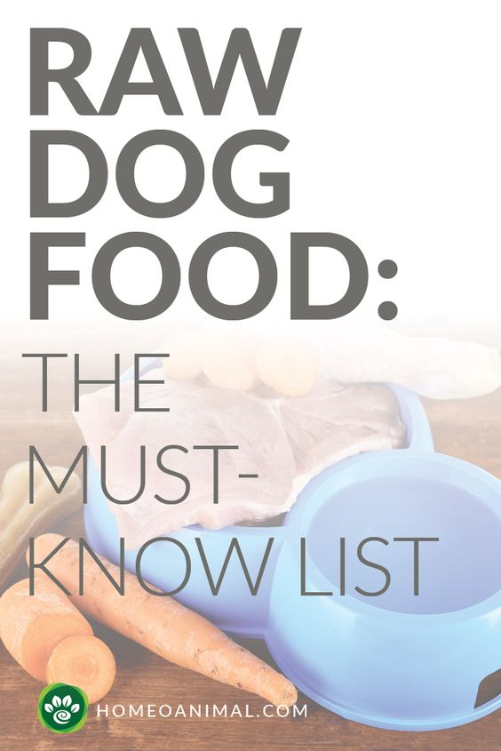 Feeding Fido raw dog food would seem to be a straightforward and super easy task for any dog parent, but did you know that there are some things you will need ...