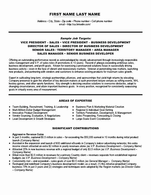 Beautiful Resume Templates Vice President In 2020 Sales Resume Examples Sales Resume Sales Jobs