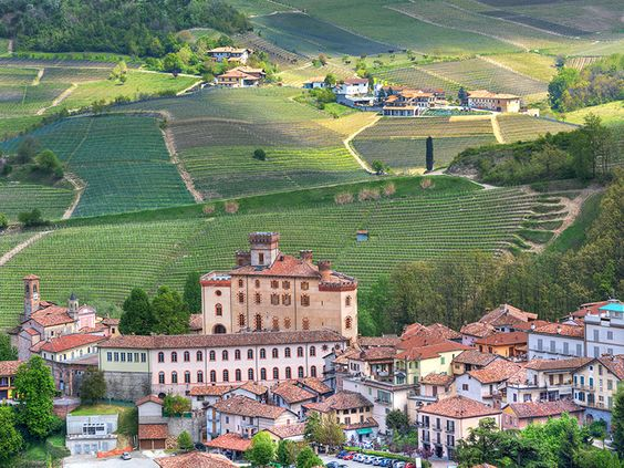 Panorama of the town of Barolo