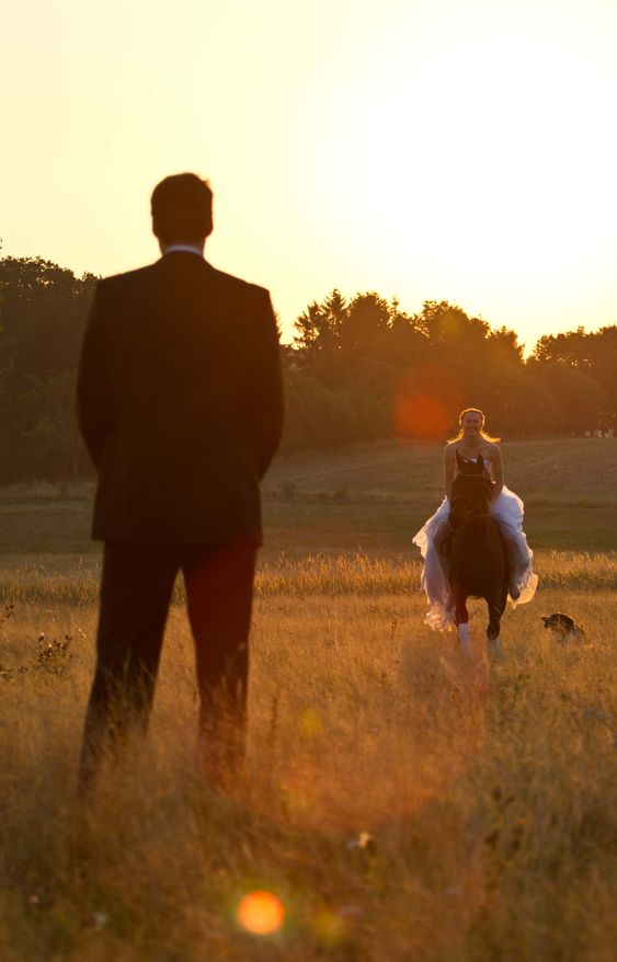Wedding shooting sunrise with horse and dog Hochzeit Fotoshooting mit Pferd und Hund