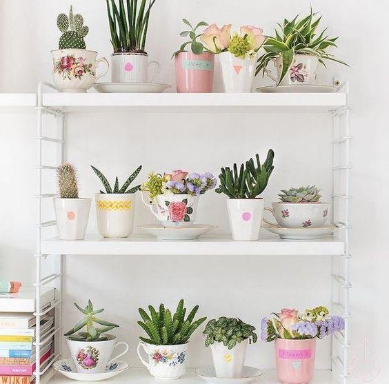 Xícaras se tornam vasos para flores e plantas!