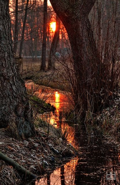 Sundown on the creek...Meklinburg, Germany