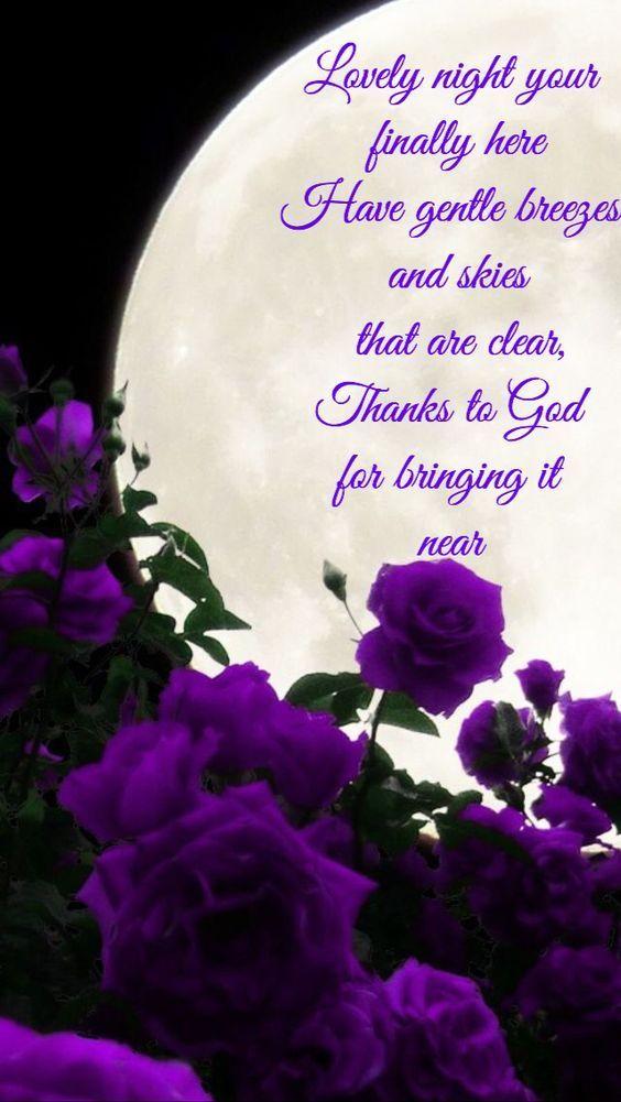 Lovely Night Your Finally Here | Good night prayer, Good night ...