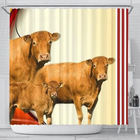 Limousin Cattle Cow Print Shower Curtain Free Shipping Cow