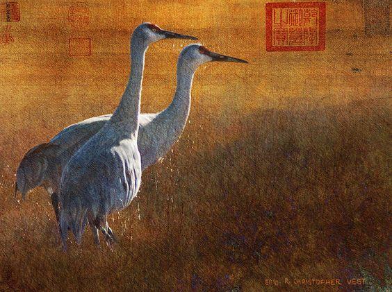 hirosige cranes gold leaf Greeting Card by R christopher Vest
